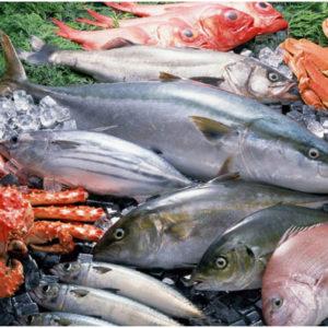 Рыбные ряды в ТК «Пулмарт»: изобилие обитателей глубин