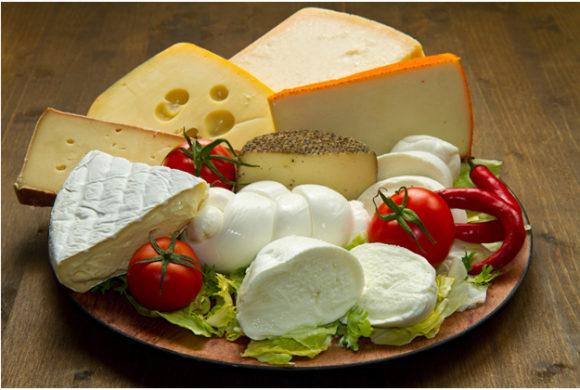 Многообразие сырной продукции
