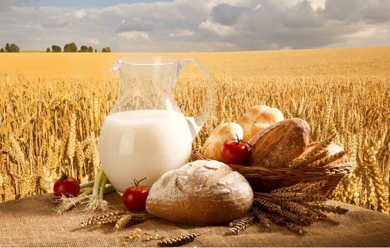 фермерские продукты 1